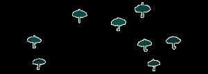 plan moyen de l'animation des parapluies