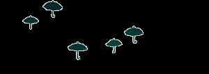 avant plan de l'animation des parapluies