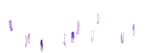 plan moyen de l'animation des plumes